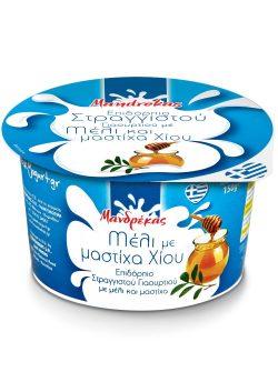 Επιδόρπιο Στραγγιστού Γιαουρτιού με Μέλι & Μαστίχα Χίου 150gr Μανδρέκας